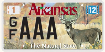 1000 images about father 39 s day on pinterest bakerella for Arkansas fishing license