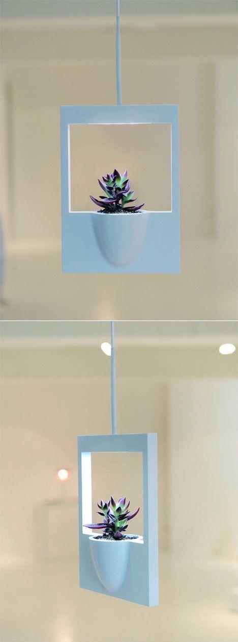 """Polaroid"" mini-vase"