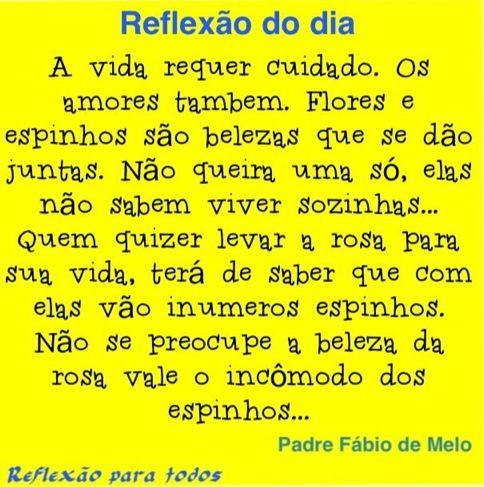 Reflexão. Amor. Padre Fabio de Melo. Visite o blog, com centenas de reflexões, orações, etc.
