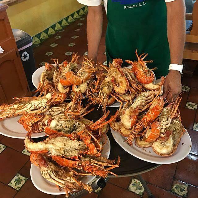 La langosta estilo Puerto Nuevo es toda una tradición en #Rosarito ¡Ven y pruébala! #BajaCalifornia  Conoce más sobre la gastronomía de Baja California visitando: www.descubrebajacalifornia.com Aventura por evillagil  #Lobster #Langosta #Food #BajaFood #BajaStyle #BajaFoodLovers #Fall #Photography #Leaves #Trees #Fashion #Art #Nature #Mx #love #instagood #photooftheday #tbt #beautiful #cute #me #happy #fashion #followme #follow #selfie #picoftheday #summer #friends #instadaily #girl #fun…