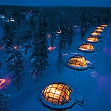 to be... iceland bound, bedded, in warm igloo
