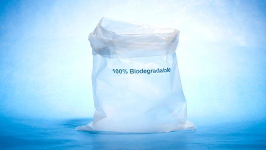 Biodegradable plastic: What you need to know