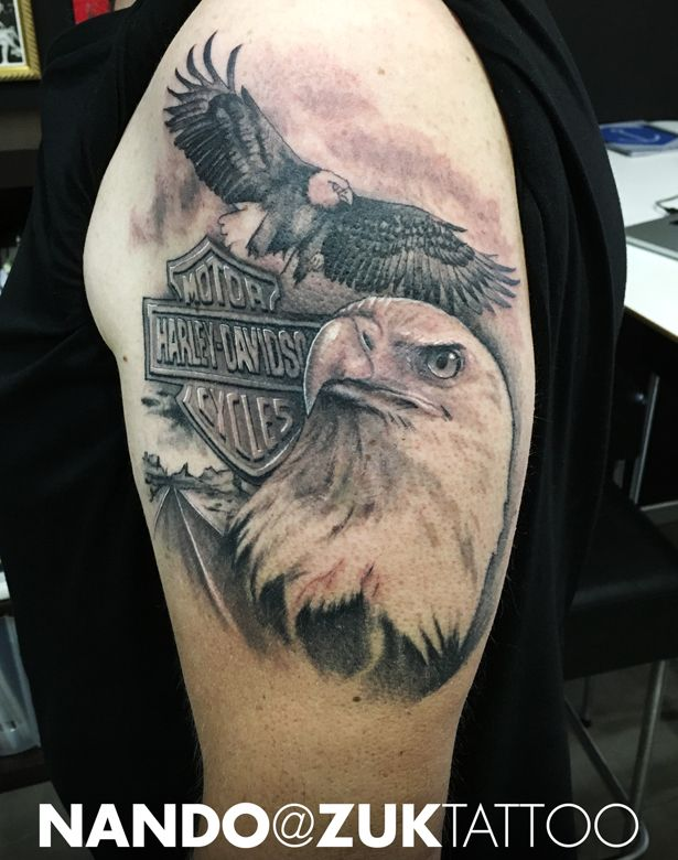 Tatuaje finalizado con dos águilas y el logo de Harley-Davidson.