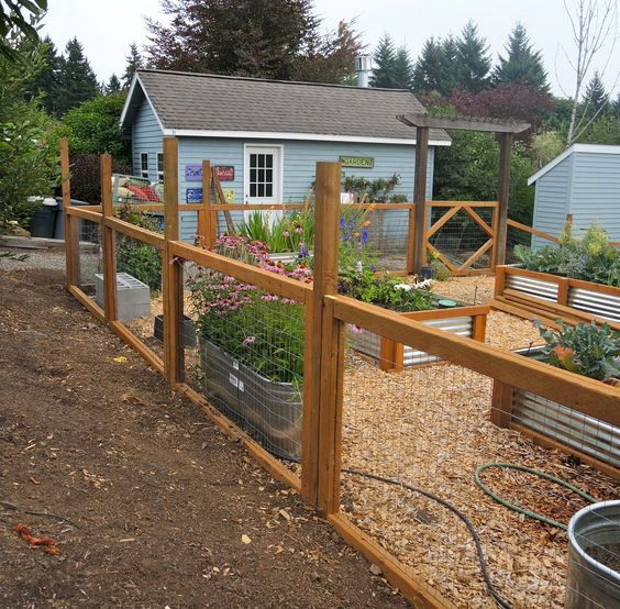 Cheap Garden Fences: 55 Best Deer Fencing Solutions Images On Pinterest