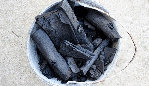 If you're burning for a supplement to give your chickens, try lighting up some hardwood. Charcoal binds to toxins.