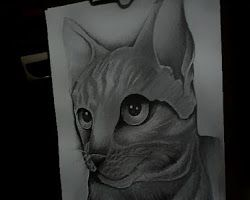 Cat Shoko Tattoo Desain
