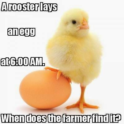 #funny #Riddle of the day