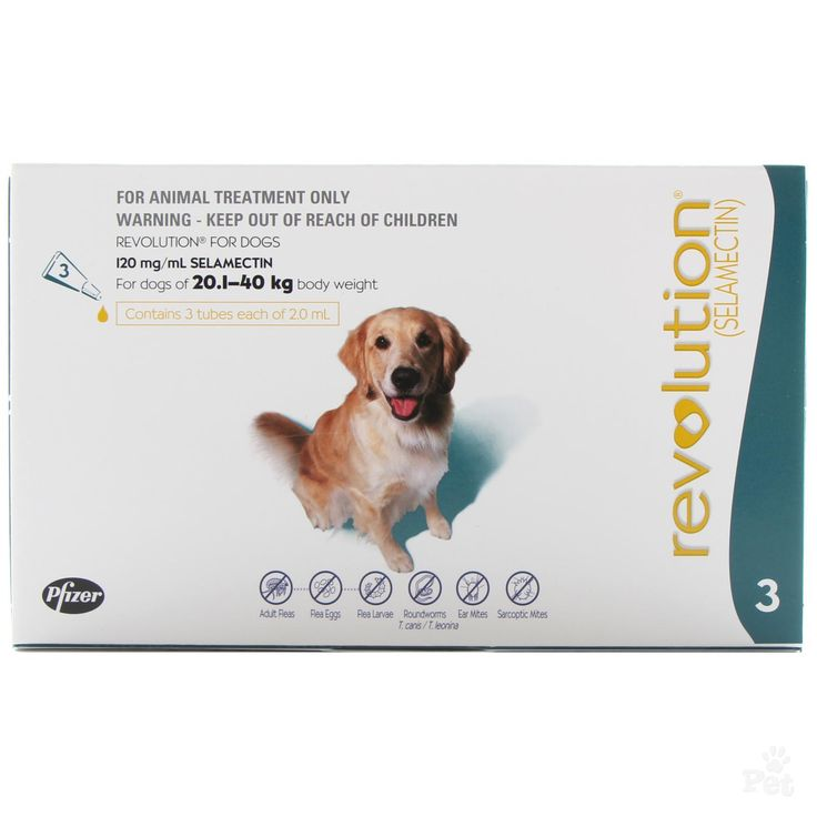 Revolution Flea Treatment for Dogs