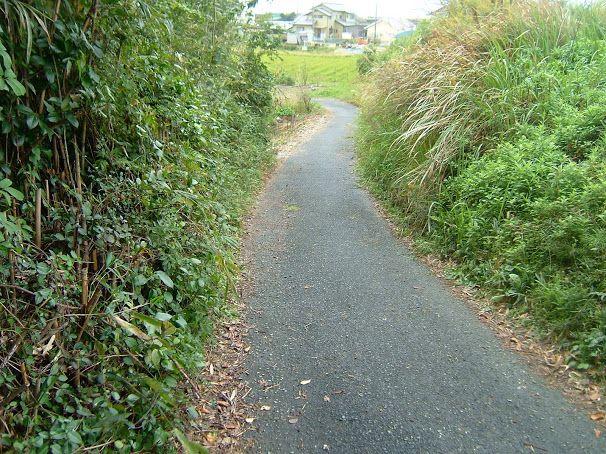 勝己道、The lane of Katumi - Google+ 袋井市諸井原野谷川堤防から下り道、高校生など自転車で通行します。久保田勝己がこの道路が狭いので拡幅工事しました諸井自治会は一切協力も費用も負担しません