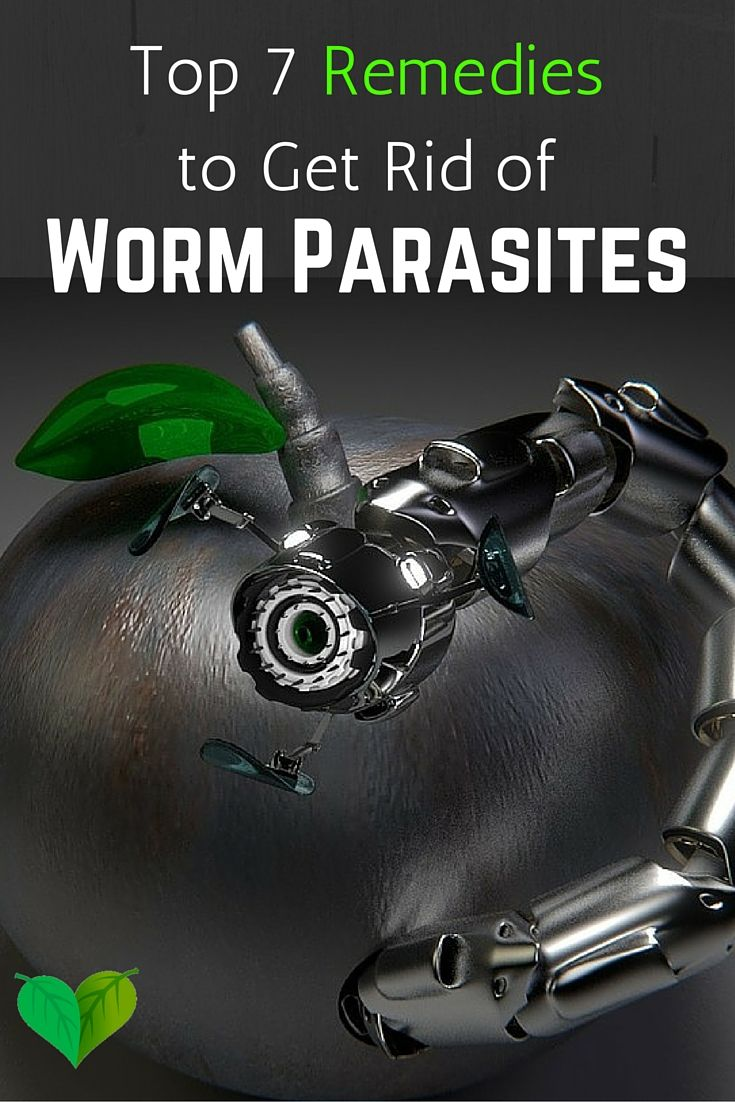 Everybody can get worm parasites at some point in their life, you could even have them and don't know it.... Here's how to get rid of them naturally and safe: http://everyhomeremedy.com/home-remedies-worms/ #parasites #worms #remedies