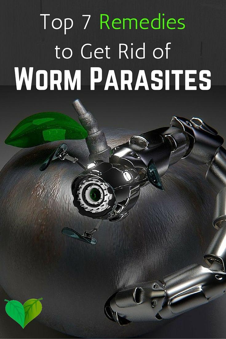 Best 25 Natural pinworm treatment ideas on Pinterest