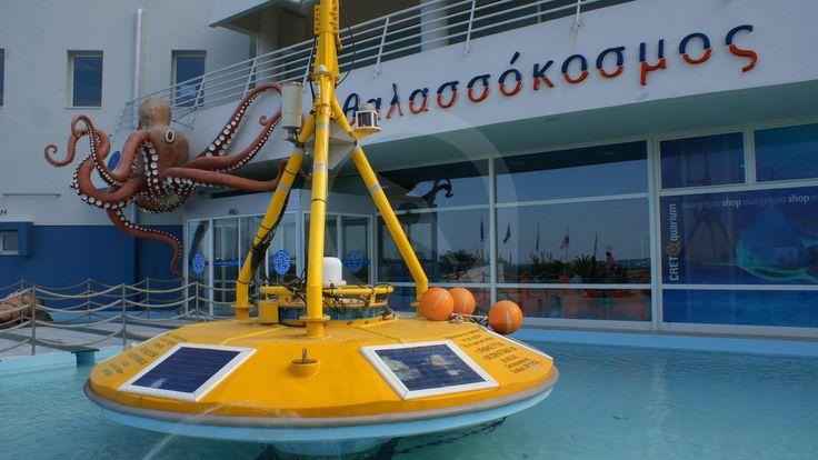 Τo Cretaquarium - Θαλασσόκοσμος, άνοιξε το Δεκέμβριο του 2005, στις Γούρνες Ηρακλείου, 15 χιλιόμετρα μόλις από το Ηράκλειο.