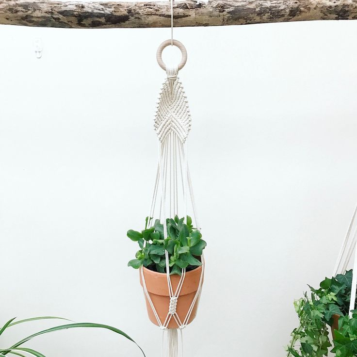 New Macrame Plant Hanger by Macrame Adventure