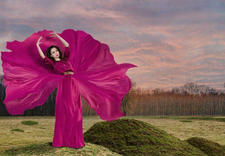 Orchid flower by Bogdan Negoita on 500px