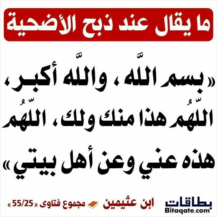Pin By Adam Sedky On مسائل في العيدين Hadith Quotes Islamic Quotes Words