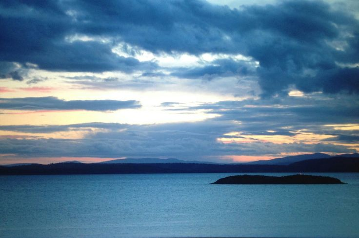 Primrose Sunset