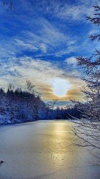Słoneczny wschód nad rzeką w lesie