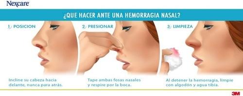Qué hacer ante una hemorragia nasal. #hemorragia #primerosauxilios