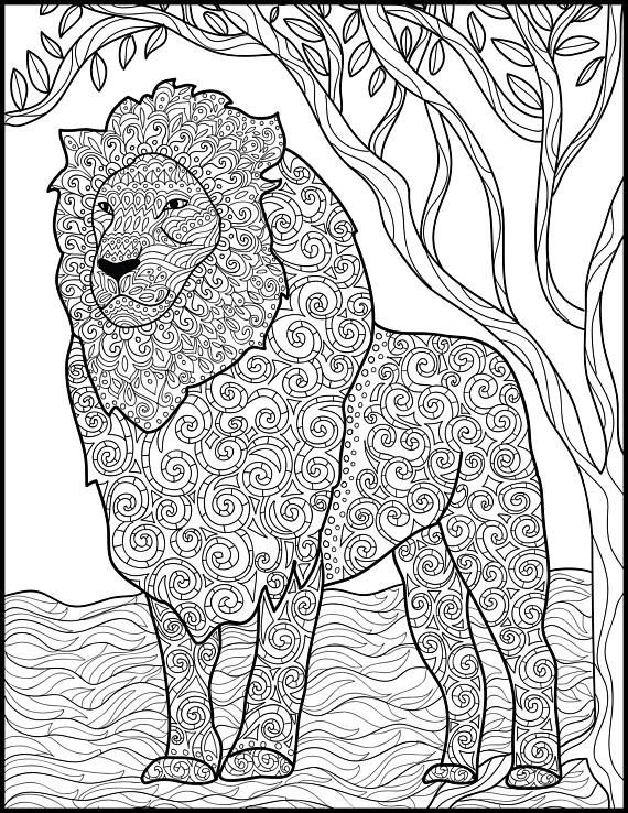 790 best Animal Coloring Pages for Adults images on Pinterest - fresh coloring pages lion head