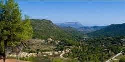 In the heart of the pink and white almond blossom Jalon Valley - Aka Vall de Pop. Jalon is inland from the coastal town of Moraira Costa Blanca....