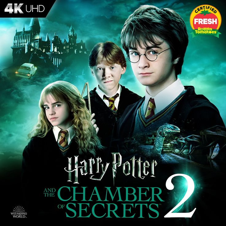 Harry Potter And The Chamber Of Secrets In 2021 Harry Potter Movie Posters Harry Potter Harry Potter Poster