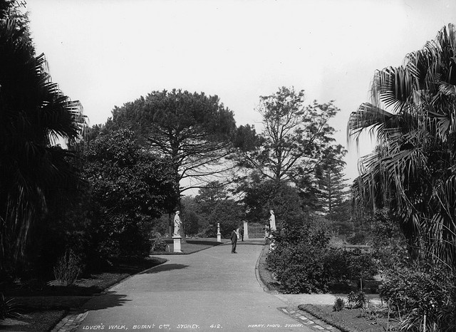 Lover's Walk, Botanic Gardens, in the late 1800's