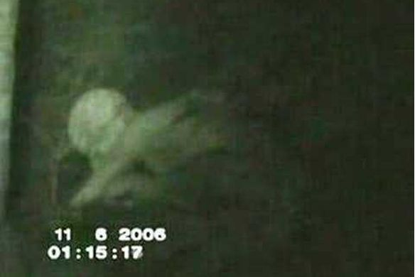 8 Creepy Paranormal Videos That Claim To Be Proof...