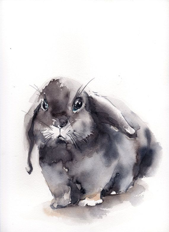 Images Of Rabbit Paintings
