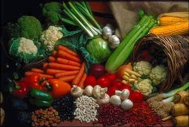A diabetic diet is not a special diet, it is the same healthy eating habits that everybody should follow. This sample diet for gestational diabetes is only an example of what is practical.