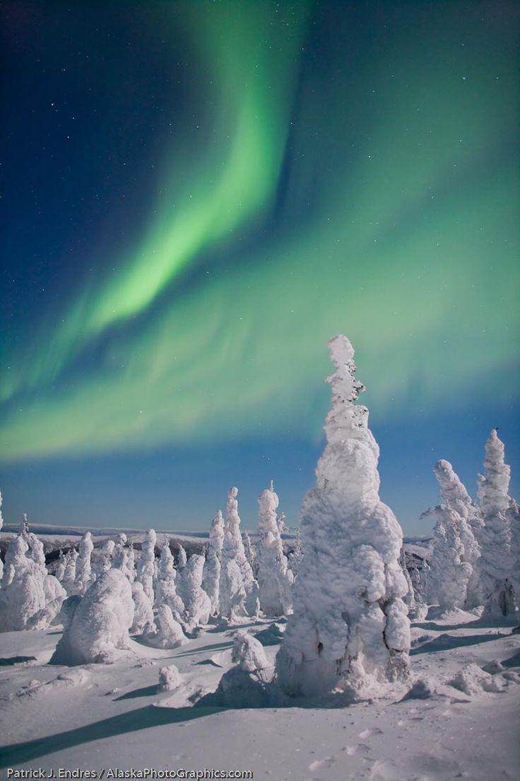 Northern lights!! <3 Aurora Borealis  A rare but unforgettable sight in Ottawa