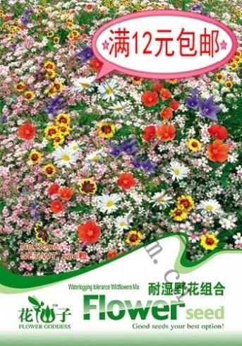 Дикие цветы сочетание семян оригинальные семена 200 12 бонсай семена для дома и сада комнатных растений