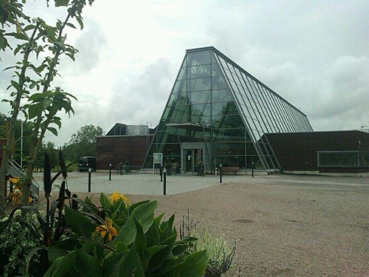 Gardenia in Helsinki, Etelä-Suomen Lääni