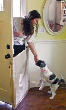 Bow Wow Barrier: Retractable Exterior Door Barrier for Pets. Your dogs or cats won't run out the door when you get home. $70 www.bowwowbarrier.com