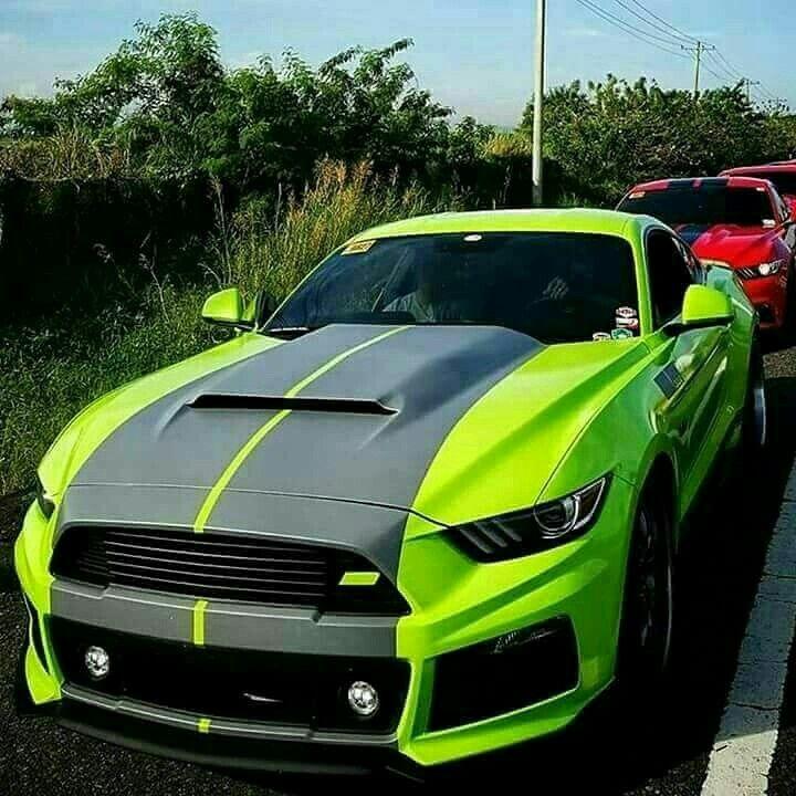 Mustang  Z_litwhips