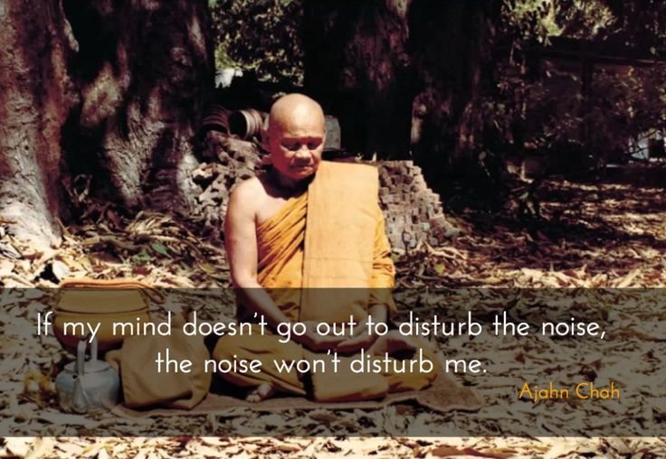 """Disturbance ~ Ajahn Chah http://justdharma.com/s/fxzux  If my mind doesn't go out to disturb the noise,  the noise won't disturb me.  – Ajahn Chah  from the book """"A Heart Full of Peace"""" ISBN: 978-0861715428  -  ?ie=UTF8&camp=1789&creative=9325&creativeASIN=086171542X&linkCode=as2&tag=jusdhaquo-20"""