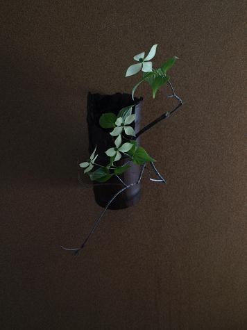 Ichihana one leaf by Atsushi