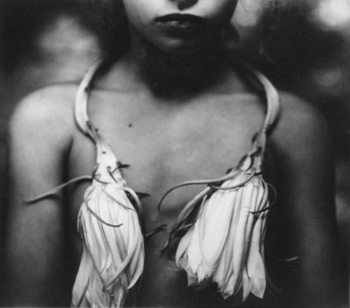 photographs by sally mann. love her work.