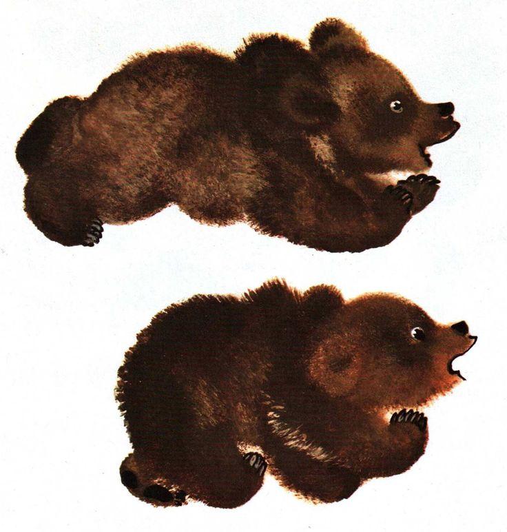Е чарушин медвежата картинки дугин странице