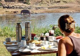 Drikkende dyr i Mara-floden