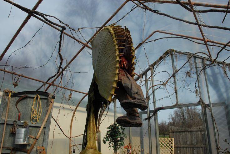 man eating plant - Google Search | crazy junk | Pinterest ...
