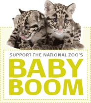 Meet Our Animals from Friends of the National Zoo