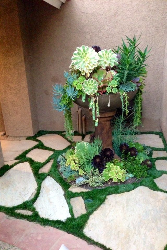 Succulents in an old fountain Have a bird bath like this and going to put my succulents in to set on my patio.