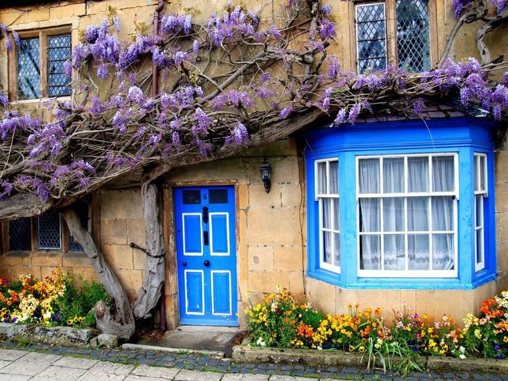 409 best house with flowers images on pinterest