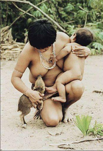 """1992 - Com o filho Tamataí no colo, a índia Huyra amamenta um filhote de porco queixada, fiel a um hábito dos Guajá, do Maranhão, de tratar como crianças os filhotes de animais que matam. Esses filhotes são chamados de """"heimá"""", palavra cognata de """"timbabo"""", de onde vem """"xerimbabo"""", tal como veio ao português do tupi antigo."""