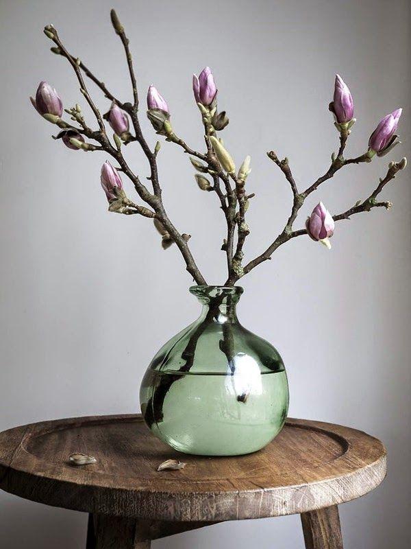 Liliomfa bimbó