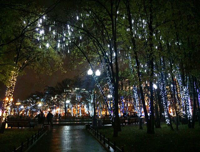 Новопушкинский сквер, 4 ноября 2015