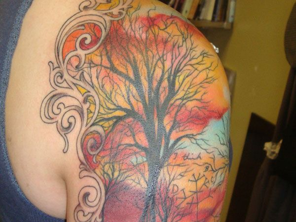 """Colorful Sleeve - watercolor background, frame, love the embedded phylogenetic tree and the hidden """"I think"""""""