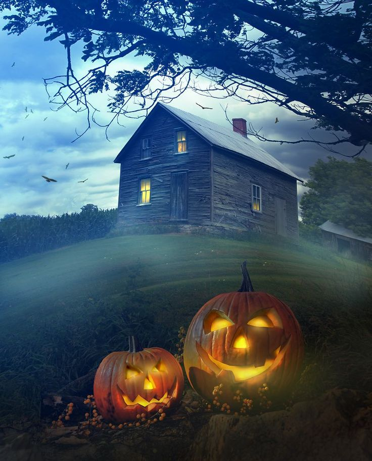 Portrait clothBackdrops for Photography Pumpkin Ghost Haunted House Lawn Halloween Backdrop Backgrounds