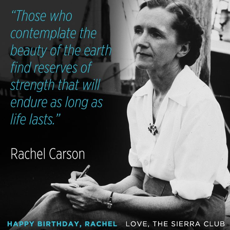 analyzing rachel carson's the obligation to Rachel carson was a marine biologist, environmentalist and writer who alerted the world to the environmental impact of fertilizers and pesticides biologist rachel carson alerted the world to the .
