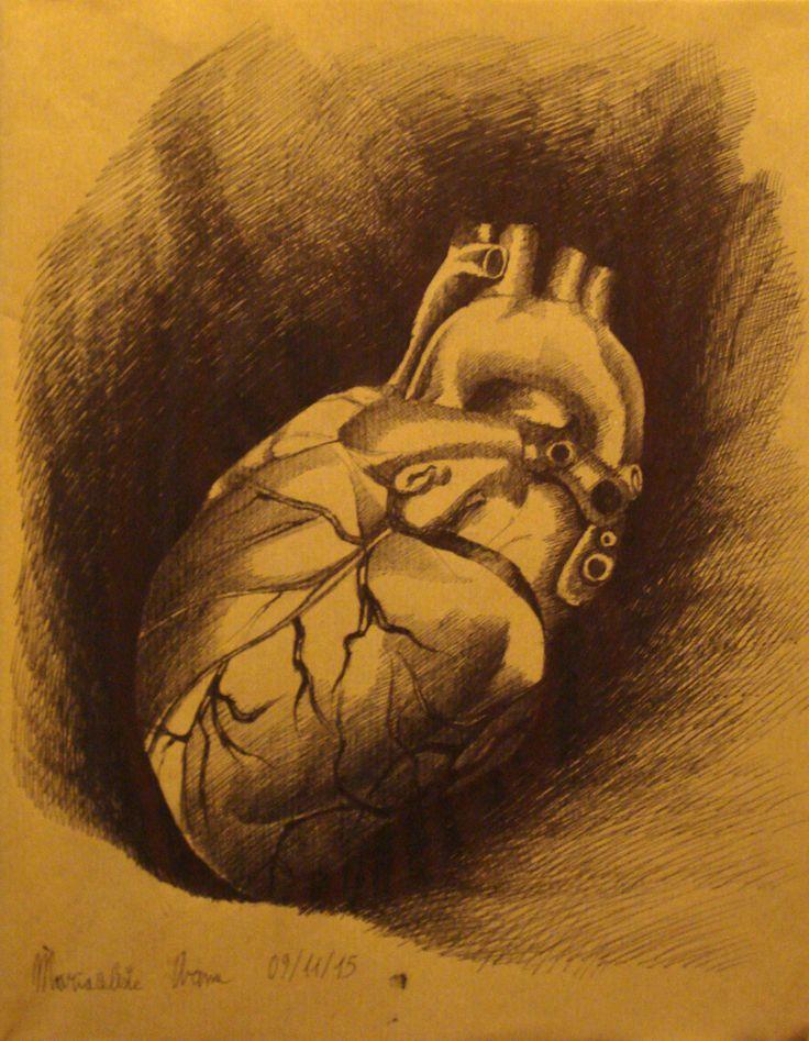 Anatomia del cuore by freesoul93.deviantart.com on @DeviantArt
